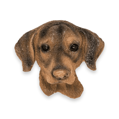 DOG-FACE-MAGNET-TWO