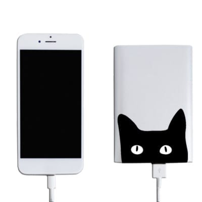 power bank web 5